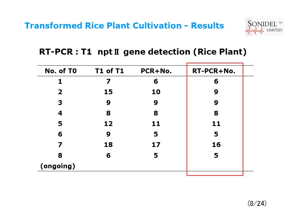 Transformed_Rice_Plant_Cultivation-Results with NEPA21